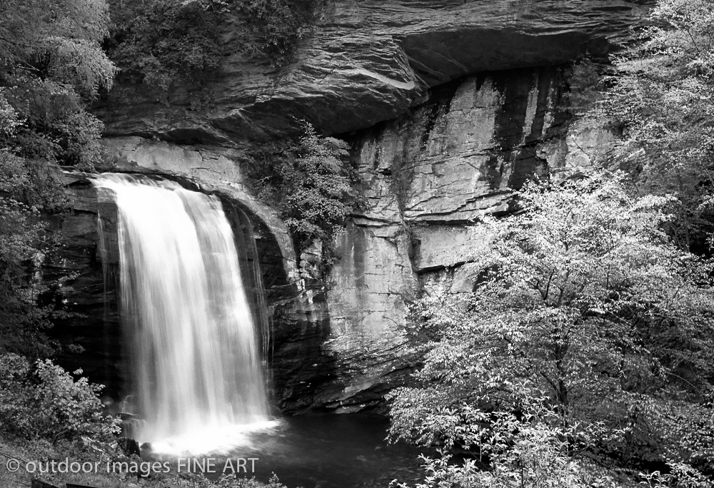 Looking Glass Falls - The Gathering