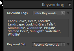 Keywords using asterisks